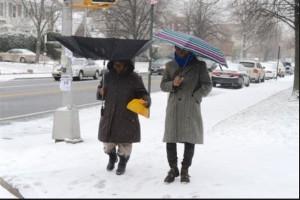 Blizzard 2015 Umbrella