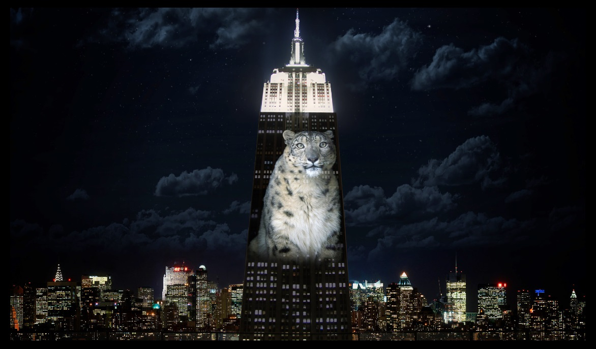 Empire State Building Light Show Endangered Species likewise Ford Logo Wallpaper as well Movie in addition Acertijos Visuales besides Christmas Coloring Pages. on oscar draw something